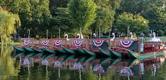 Swan Boats Bunting (mgstanton) Tags: boston swanboats swan boats reflection pond redwhiteandblue bostonpublicgarden on1