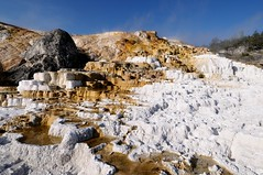 Mammoth Hot Springs (YuriZhuck) Tags: us usa wy wayoming nature landscape geothermal spring terrace salt yellowstone park