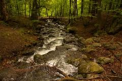 Bridge through a mountain stream (gennadiy.troitskiy) Tags:    bg road mountains creek stones nature trees colors