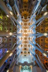 The roof (Matti .) Tags: gaudi sagradafamilia barcelona nikon d810 2035mmf28d