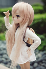 """""""Where are they?!"""" (lightlybattered) Tags: mdd custom modded repaint mini dollfie dream volks ddh01 shiro no game life"""
