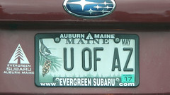 U OF AZ (blazer8696) Tags: 2016 ct ecw t2016 usa unitedstates dscn0383 license maine me plate uofaz vanity wilton connecticut georgetown