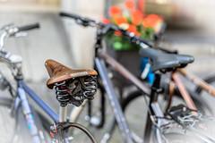 BROOKS Bokeh II (*Capture the Moment*) Tags: 2016 brooks bern berne bicycle bicycleseat bokeh citytrip citywalk fahrrad fotowalk leather leder minimalism minimalismus sattel vintage bokehlicious handmade