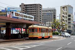 Iyotetsu 54 [Matsuyama tram] (Howard_Pulling) Tags: matsuyama japan april 2014 japanese howardpulling