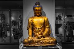 DSC01270 (MLPixels) Tags: budda statue exhibit ubc vancouver religion museum museumofanthopology
