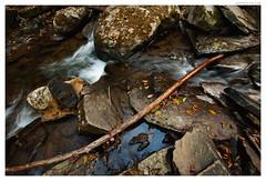 Stream Texture (Geoff Sills) Tags: forest stream texture fall top down river water nature ground long exposure waterfall nikon d700 35mm 14g geoffrey william sills geoff