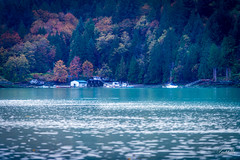 Living by the sea   (T.ye) Tags: inlet sea waterfront house landscape island tree forest blue beach