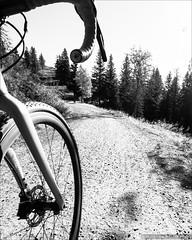 Gravel (Torsten Frank) Tags: crossrad cyclocross deutschland dirtroad fahrrad feldberg feldweg giant gravel hochschwarzwald mittelgebirge radfahren radsport schwarzwald straenbelag tcxadvancedpro1 votecgravelfondo wanderweg weg wirtschaftsweg unbefestigt badenwrttemberg sdschwarzwald cycling bike bicycle