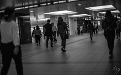 Lr-227 (m_yuuta25) Tags: filmphotography film fm3a 50mm