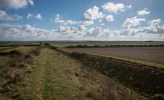 Devil's Dyke Walk-11 (adambowie) Tags: devilsdyke cambridgeshire newmarket