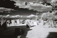 Cemetery (goodfella2459) Tags: nikon f4 agfa rollei infrared 400s 35mm bw film analog cemetery old moss vale southern highlands hoya ir r72 filter milf new south wales lens filters group