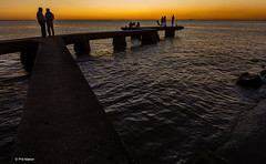 Sunset fishing off a cement pier - Montevideo, Uruguay (Phil Marion (57 million views - thank you all)) Tags: uruguayan puta latina kids 5photosaday beautiful cosplay candid beach woman girl boy teen  schlampe      desnudo  nackt nu     nudo   kha upskirt   malibog    hijab nijab burqa telanjang   tranny  nude naked sexy   chubby young nubile phat cleavage slim plump sex slut nipples ass hot xxx boobs dick balls tits fat