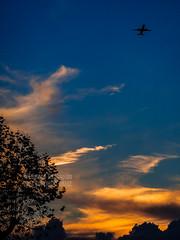 Winter Sunset Over London (Edmond Terakopian) Tags: sunset sky holiday london nature beautiful clouds plane airplane fly glow dusk transport flight jet airline glowing