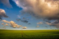 #Simplicity Itself (Eric Goncalves) Tags: winter light england cold color nature beautiful canon landscape vibrant gloucestershire 6d simplicityitself ericgoncalves