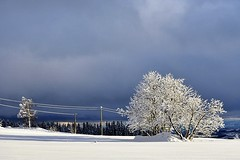 A sunny and cloudy winter day. ( Explored) (janrs7) Tags: