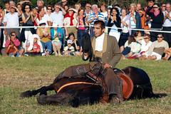 Exhibicin Ecuestre - Bonas 2006 (Robles de la Valcueva) Tags: espaa caballo spain europa europe fiestas 2006 ecuestre len romera roblesdelavalcueva haciendoclack jessgonzlez bonas