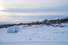 DSC01512 (ekremenak) Tags: photo iceland 1502 150212 doublehaybales