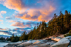 A Forest on an Island (SamHardgrove) Tags: ocean sunset tree water clouds forest island rocks maine atlantic granite spruce