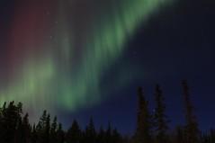 Dancing Aurora's (Beard&Glasses) Tags: canada night canon rebel north yukon aurora whitehorse northernlights xsi yt 2015 auoraborealis exploreyukon