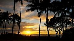 Waikiki Sunset (photawwgraphy) Tags: travel blue sunset vacation sky people tourism beach water silhouette yellow clouds landscape hawaii sand pretty colours waikiki oahu naturallight palmtrees pacificocean beaches honolulu waikikibeach