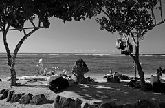 Homeless ... or nearly so ... in Hawaii (jcc55883) Tags: ocean sky bw hawaii nikon waikiki oahu horizon pacificocean yabbadabbadoo d40 nikond40 alamoanaarea dukekahanamokubeachpark