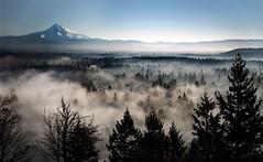 Foggy Morning (Darrell Wyatt) Tags: mountain fog portland mounthood rockybutte pwlandscape