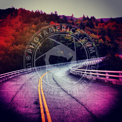 NORTHCAROLINA-258