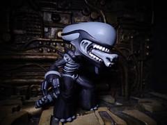 Funko Alien (ridureyu1) Tags: toy toys actionfigure alien pop kenner bobblehead funko toyphotography funkopop sonycybershotsonycybershotdscw690 mysterymini funkoalien