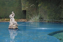 H is for Heavenly (Susan Leech) Tags: pool dolphin cherub hidcote