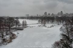 DSC_5449 (VDE_LIMA) Tags: nyc winter snow newyork centralpark gothamist d810 nikond810