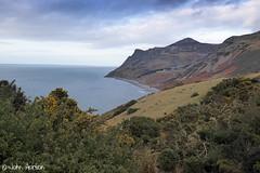 Porth y Nant (Row 17) Tags: uk greatbritain sea seascape beach wales coast unitedkingdom path shoreline hills coastal gb hillside footpath gwynedd gorse lleyn nationaltrail