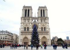 Notre Dame with Christmas tree. Paris. (elsa11) Tags: christmas paris noel christmastree notredame parijs