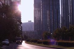Toronto Morning (samuelwilton) Tags: toronto downtown city urban sunflair sun sunlight summer morning beautiful light skyscrapper buildings rogers centre rogerscentre truck