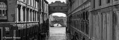 perspective (Ramesh_Thadani) Tags: bridge venice italy water architecture canal it gondola venezia touristattraction attraction gondolier historiccity veneto historiccenter gondoleiro historiccentre riodepalazzoodecanonica