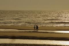 Belgian coast (Natali Antonovich) Tags: sea reflection beach silhouette walking landscape seaside walk lifestyle northsea romantic parallels relaxation seashore seasideresort romanticism belgiancoast wenduine seaboard