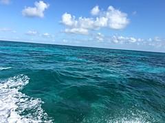 Headed to a Coral Reef (MyFWCmedia) Tags: ocean boat saltwater myfwc myfwccom wildlife florida floridafishandwildlife conservation johnpennekamp keylargo flkeys floridakeys floridastateparks johnpennekampcoralreefstatepark park pennekamp lovefl