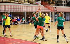 HandballMesterligaP1-7 (Sommereventyret) Tags: merker sommereventyret 2016 periode2 hndball mesterliga