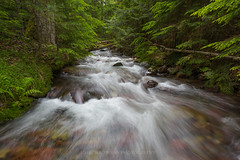 Sprague Creek (Bob Bowman Photography) Tags: trees green water creek river landscape rocks stream fresh glaciernationalpark gnp westglacier