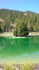 Il paradiso in terra Valbione #pontedilegno (losting75) Tags: pontedilegno vallecamonica valledeisegni lombardia montagne