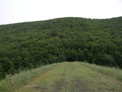 Tuscarora State Park (stingrayintl) Tags: pennsylvania pa schuylkillcounty pennsylvaniastateparks pastateparks tuscarorastatepark