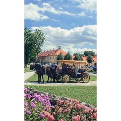 #Germany #Moritzburg #Saxony #travel #summer #europe #towns #heritage #instatravel #instapic #sunny #oldschool #peaceful #flowers #horse #sky #colors (VaibhavSharmaPhotography) Tags: germany moritzburg saxony travel summer europe towns heritage instatravel instapic sunny oldschool peaceful flowers horse sky colors