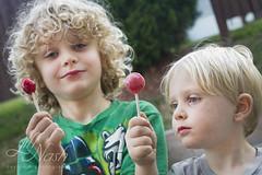 Badass lollies (grilljam) Tags: ewan 7yrs seamus 4yrs lollies tootsierollpops cherry strawberry afterdinnertreats becausesummer august2016 summer theyaresoproud littlethings