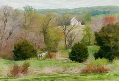 Vernal Hues (Terry Pellmar) Tags: texture digitalart digitalpainting spring hills trees elitegalleryaoi bestcapturesaoi