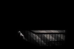 Apne Visuelle (LoKee Photo) Tags: lokee low key black white dark street urban nikon nikonpassion d7000 paris 35mm