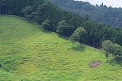17Tonomine Highland (anglo10) Tags:   japan field