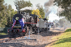 QPSR Troop Train August 2016 event, Ipswich Bundamba (Photos by Lance) Tags: bundambaipswich ipswichqueensland queensandaustralia qr queenslandrail qgt ggr steamtrain steamlocomotive train passengertrain smokeandsteam focus railroad tracks railfans geotagged narrowgauge touristtrain ac16classnumber221a pb15classnumber448 flags australia usa trooptrain bundambatoswanbank