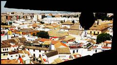 Cordoba depuis le minaret de la Mezquita-Catedral, Andalucia, Espana (claude lina) Tags: claudelina espana spain espagne andalucia andalousie ville city town cordoba cordoue architecture mosque mezquitacatedral cathdrale vue view landscape minaret