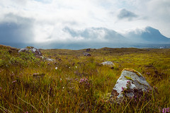 Scotland (Felicius Exelsberg) Tags: scotland nature higlands hiking vintage fuji fujifilm xt1 travel wanderlust green landscape skye sky glencoe gras mountains mountain rock rocks color colour farbe landschaft felsen farn wandern bergsteigen schottland