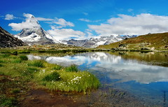 das Matterhorn (welenna) Tags: alpen alps switzerland snow summer schwitzerland schnee sky see swiss stone clouds cloud classic view landscape lake light berge blue mountains mountain mist matterhorn fog flowers relief reflection reflexion wasserspiegel water wasser wallis wolken himmel hiking riffelsee