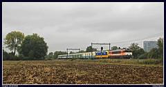 Locon 9905+NSR 186 002+(ex)EETC rijtuigen te Hengelo (Allard Bezoen) Tags: ex eetc euro express train charter rijtuig rijtuigen inox nmbs ns db bagagewagen wagen bagagewagens logo nsr nederlandse spoorwegen reizigers traxx bombardier loc eloc lok elok elektrolok lokomotieve locomotive locomotief serie 1600 1800 9900 9905 locon nez cass hengelo westermaat
